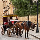 Exclusieve incentive reis naar Malta
