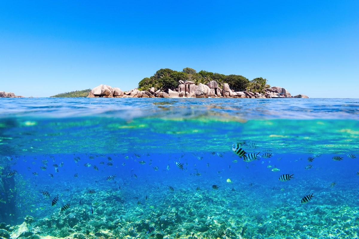 Relatiereis naar zonnig en exotisch Seychellen.