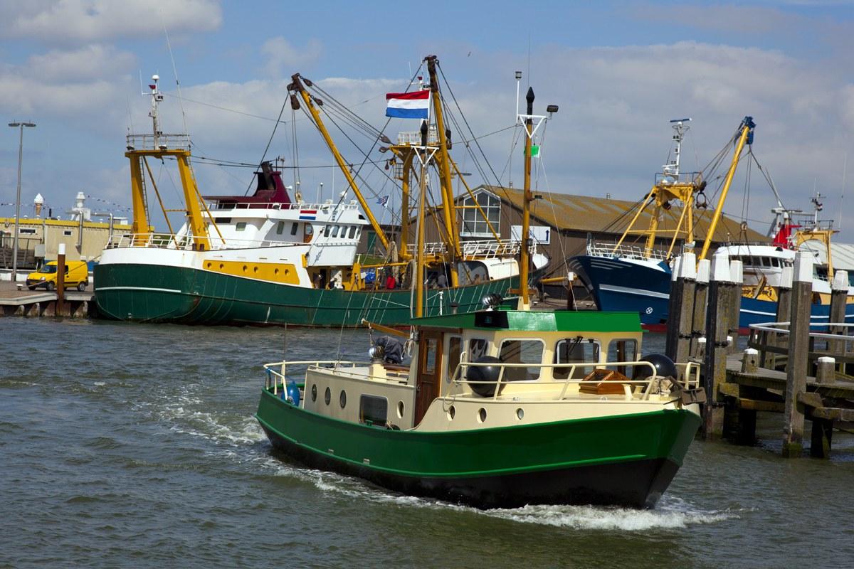 Texel | actief bedrijfsuitje | 1 dag